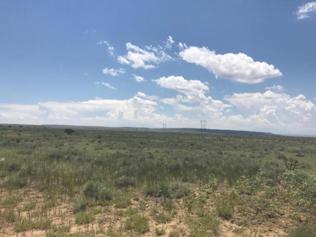 Lot 66A Turkey Ridge Ranch Pha, Walsenburg, CO 80189 (MLS #18-823) :: Sarah Manshel of Southern Colorado Realty