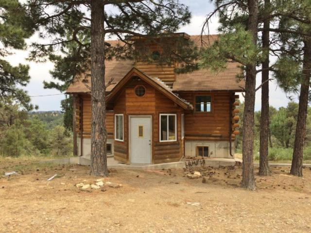 20560 Timber Lane, Trinidad, CO 81082 (MLS #18-856) :: Sarah Manshel of Southern Colorado Realty