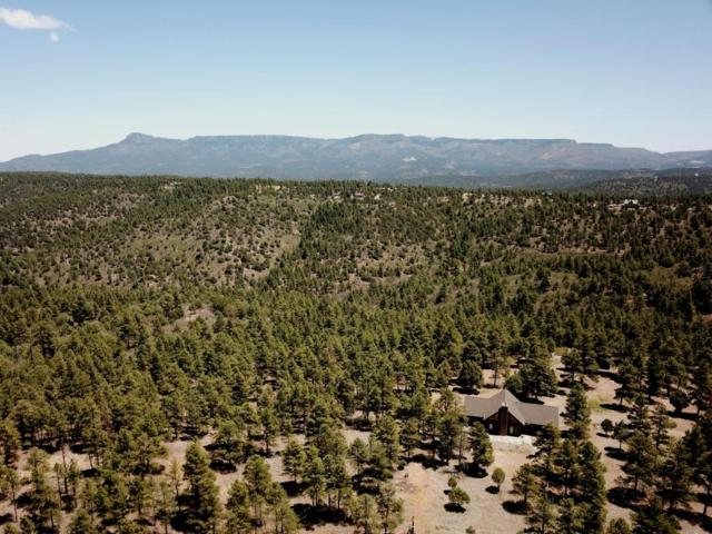 33050 Tall Timber Trace # C35, Trinidad, CO 81082 (MLS #18-864) :: Sarah Manshel of Southern Colorado Realty