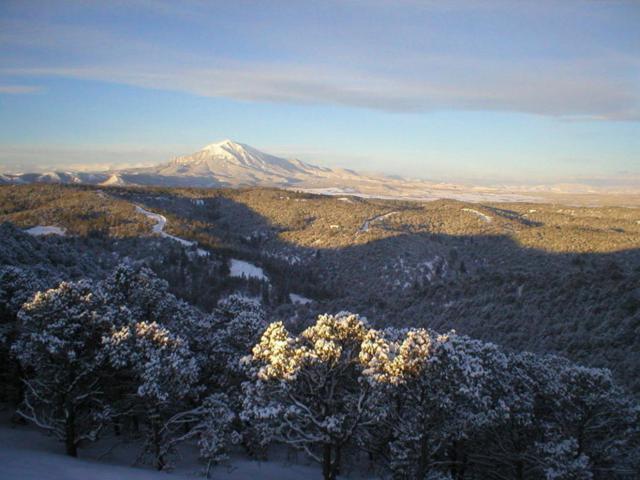 Blackhawk Ranch Parcel 93 Parcel 93, Walsenburg, CO 81089 (MLS #18-871) :: Sarah Manshel of Southern Colorado Realty