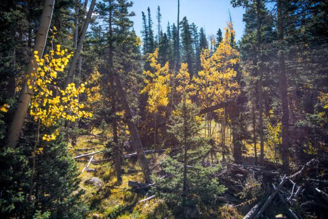 Lot 1 Cuchara Pass Ranch, Cuchara, CO 81055 (MLS #18-891) :: Sarah Manshel of Southern Colorado Realty