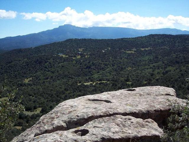 7788 Cedar Way #49, Trinidad, CO 81082 (MLS #18-895) :: Sarah Manshel of Southern Colorado Realty