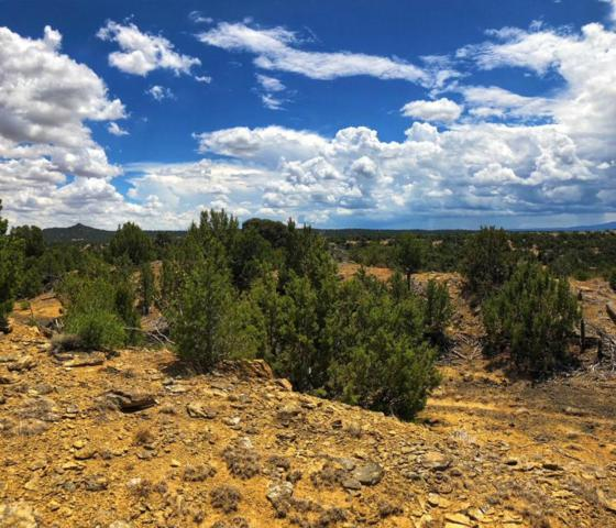 Calle La Sierra Blanka Drive Lot 4, Walsenburg, CO 81089 (MLS #18-897) :: Big Frontier Group of Bachman & Associates
