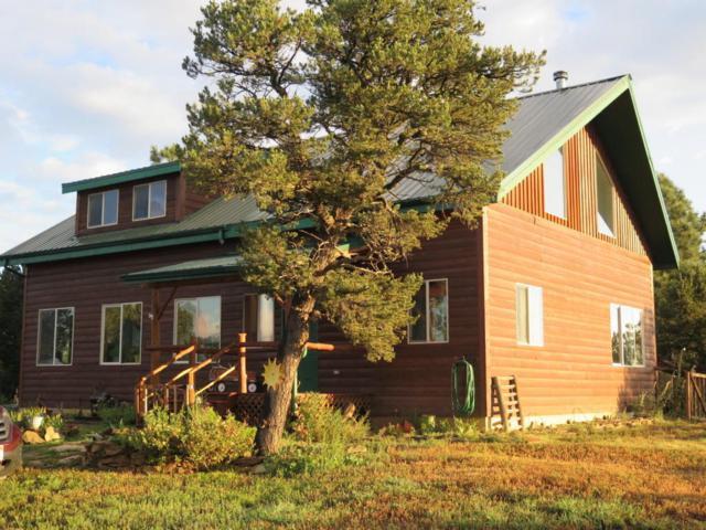 3000 Chelo Ranch Rd, Trinidad, CO 81082 (MLS #18-922) :: Sarah Manshel of Southern Colorado Realty