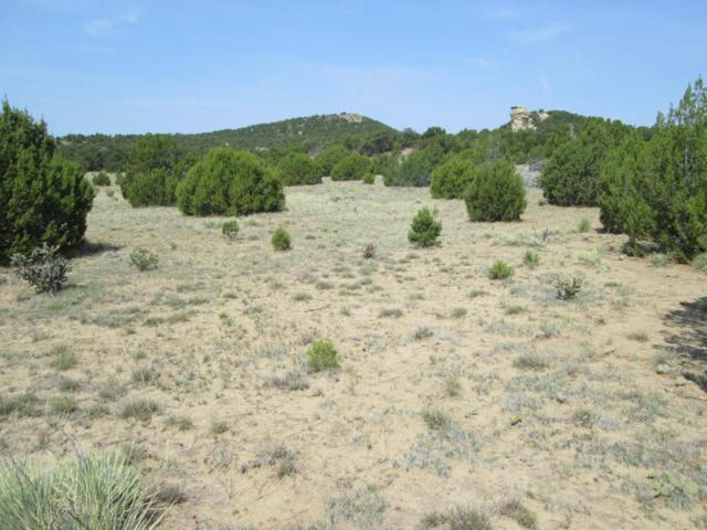 6 20 +/- Acres Tract 6, Walsenburg, CO 81089 (MLS #18-935) :: Sarah Manshel of Southern Colorado Realty