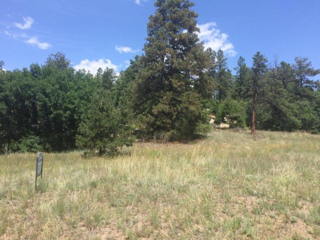not assign Lot 75 Fil 5, Weston, CO 81091 (MLS #18-957) :: Sarah Manshel of Southern Colorado Realty