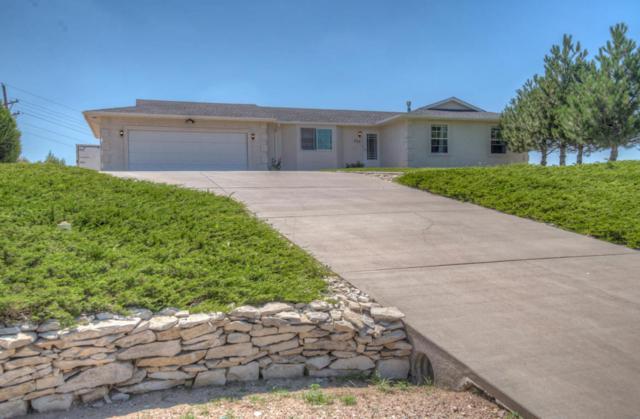 939 S Cellini Place Pueblo West, Pueblo, CO 81007 (MLS #18-960) :: Sarah Manshel of Southern Colorado Realty