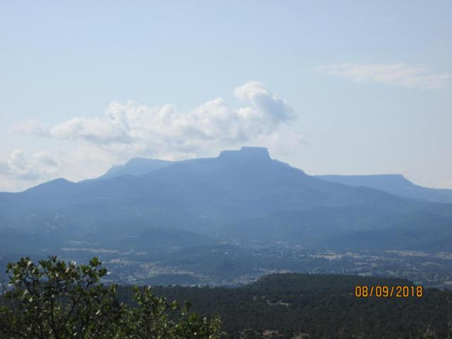 Vacant lot Fishers Peak Ranch Lot D13, Trinidad, CO 81082 (MLS #18-974) :: Big Frontier Group of Bachman & Associates