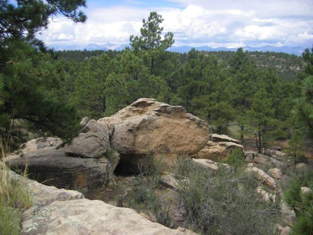 Big Pine Ridge Tract 72, Weston, CO  (MLS #18-99) :: Sarah Manshel of Southern Colorado Realty