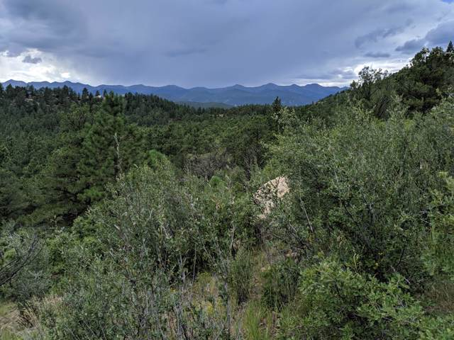 TBD North Fork Ranch Lot 10, Weston, CO 81091 (MLS #19-1002) :: Big Frontier Group of Bachman & Associates