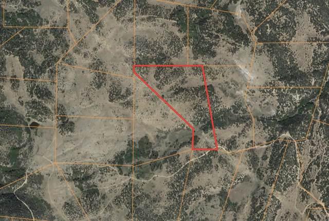 Lot 99 Cl&G Unit Cc-1, Walsenburg, CO 81089 (MLS #19-1006) :: Big Frontier Group of Bachman & Associates