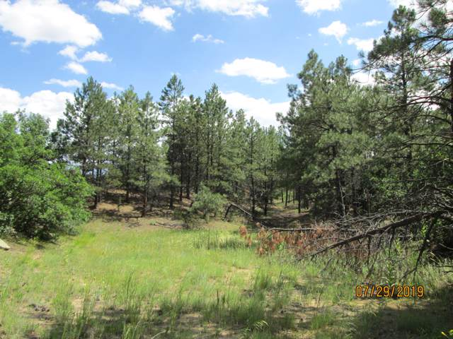 Whispering Pine Estates Fil #2 #3, Bon Carbo, CO 81027 (MLS #19-1023) :: Big Frontier Group of Bachman & Associates