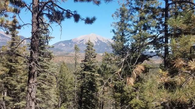 11901 Jewel Overlook, Weston, CO 81091 (MLS #19-1114) :: Big Frontier Group of Bachman & Associates