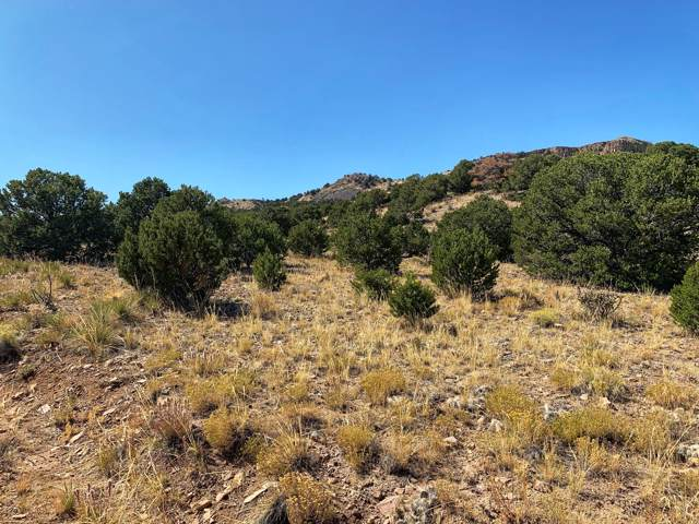 Lot 16 Badito Hills Ranch, Walsenburg, CO 81089 (MLS #19-1121) :: Big Frontier Group of Bachman & Associates