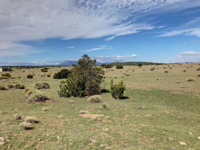 Lot 732 Ladeora Blvd. Lot 732, Walsenburg, CO 81089 (MLS #19-1128) :: Big Frontier Group of Bachman & Associates