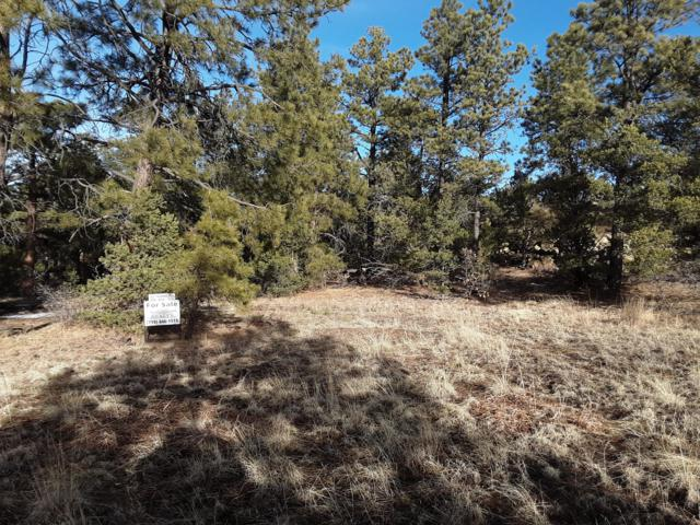 TBD Spruce Cir Fil 4, Lot 98, Weston, CO 81091 (MLS #19-114) :: Big Frontier Group of Bachman & Associates