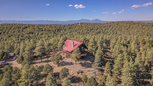 33010 Wildwood, Trinidad, CO 81082 (MLS #19-1154) :: Big Frontier Group of Bachman & Associates