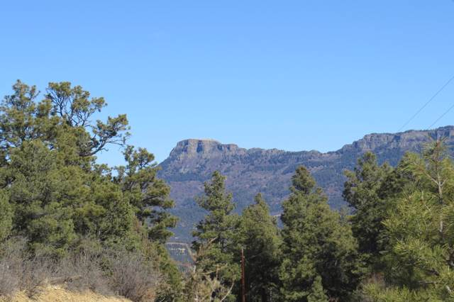 150 Old Mission Ridge Parcel D48, Trinidad, CO 81082 (MLS #19-1164) :: Big Frontier Group of Bachman & Associates