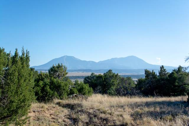Lot 134 Navajo Ranch Estates, Walsenburg, CO 81089 (MLS #19-1185) :: Big Frontier Group of Bachman & Associates