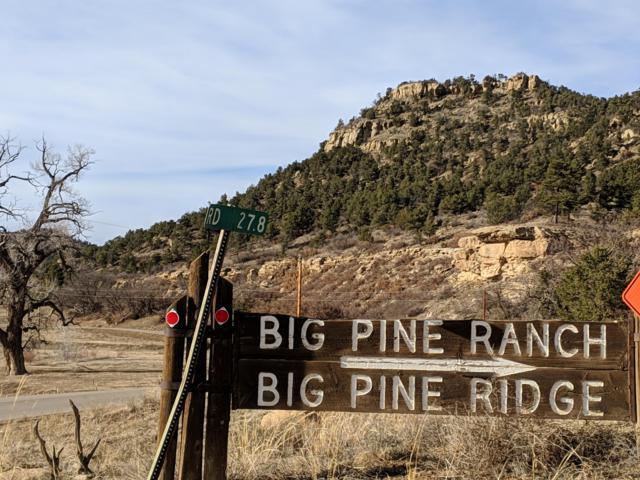 TBD Big Pine Ranch Lot 58, Weston, CO 81091 (MLS #19-127) :: Big Frontier Group of Bachman & Associates