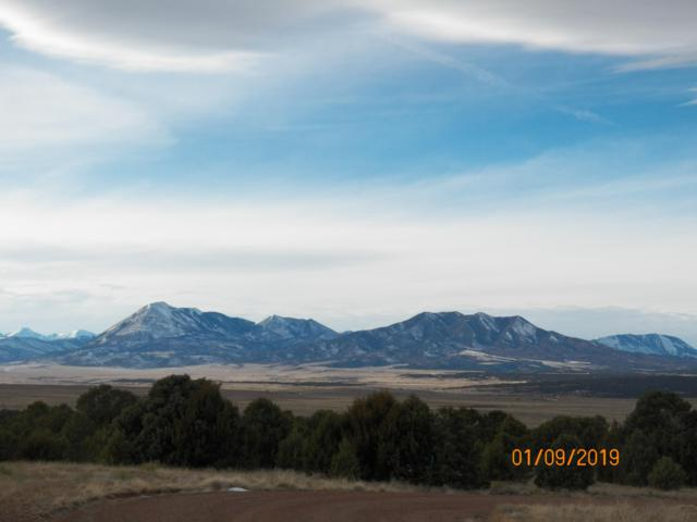 Phase 2 River Ridge Ranch Lot 74, Walsenburg, CO 81089 (MLS #19-21) :: Big Frontier Group of Southern Colorado Realty