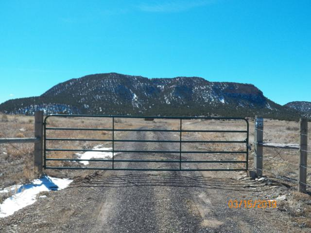 0 Tbd Co. Rd. 63.1, Aguilar, CO 81020 (MLS #19-216) :: Big Frontier Group of Bachman & Associates