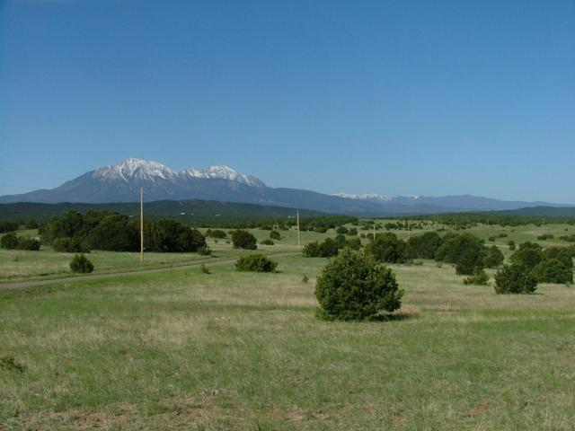 TBD Trailsend Drive #70, Walsenburg, CO 81089 (MLS #19-219) :: Big Frontier Group of Bachman & Associates