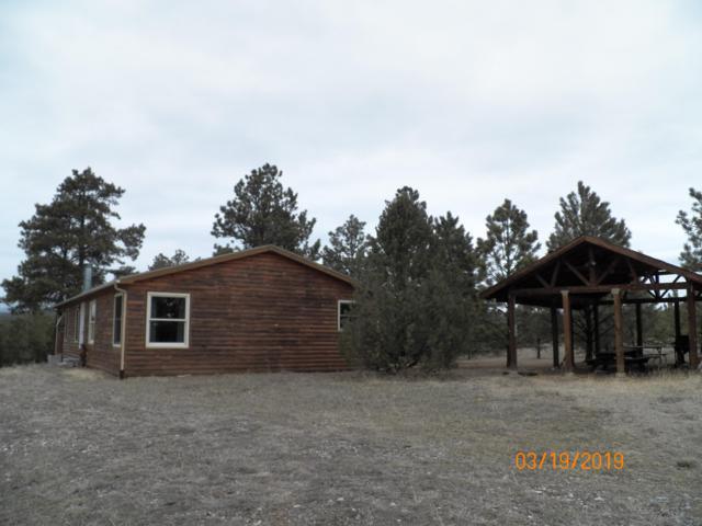 24461 Trujillo Creek Ranch Rd, Aguilar, CO 81020 (MLS #19-228) :: Big Frontier Group of Bachman & Associates