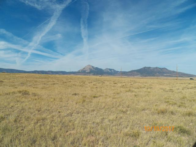TBD Hwy 12 2-A, LaVeta, CO 81055 (MLS #19-246) :: Big Frontier Group of Bachman & Associates