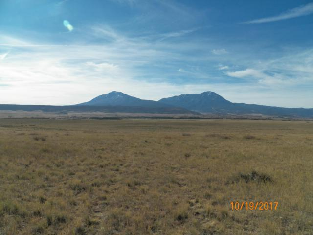 TBD Hwy 12 3-B, LaVeta, CO 81055 (MLS #19-249) :: Big Frontier Group of Bachman & Associates