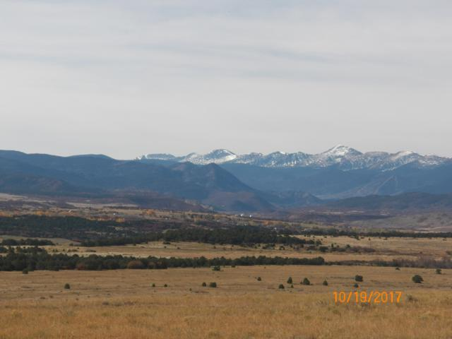 TBD Hwy 12 4-A, LaVeta, CO 81055 (MLS #19-250) :: Big Frontier Group of Bachman & Associates