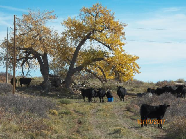TBD Hwy 12 Shearer Reservoir 1-5, LaVeta, CO 80155 (MLS #19-254) :: Big Frontier Group of Bachman & Associates
