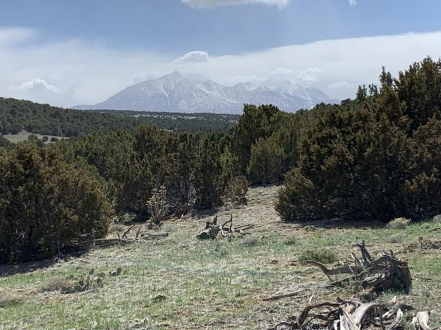 Silver Spurs Ranch #66, Walsenburg, CO 81089 (MLS #19-334) :: Big Frontier Group of Bachman & Associates
