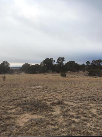 TBD Tyrone Hills 180&181, Walsenburg, CO 81089 (MLS #19-343) :: Big Frontier Group of Bachman & Associates