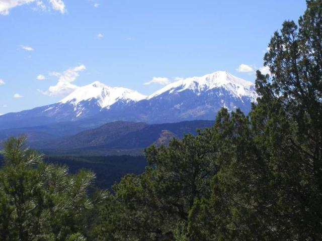 Tract 7 River Pines Ranch Unit 1 #7, Aguilar, CO 81020 (MLS #19-346) :: Big Frontier Group of Bachman & Associates