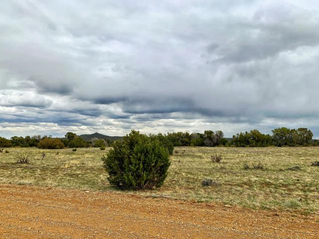 TBD Sierra Vista Drive #682, Walsenburg, CO 81089 (MLS #19-373) :: Big Frontier Group of Bachman & Associates