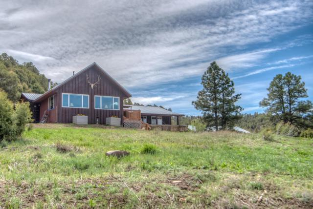 20120 Phillips Lane Lot 57, Trinidad, CO 81082 (MLS #19-394) :: Big Frontier Group of Bachman & Associates