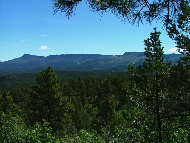 TBD Fox Trail Parcel D86, Trinidad, CO 81082 (MLS #19-411) :: Big Frontier Group of Bachman & Associates