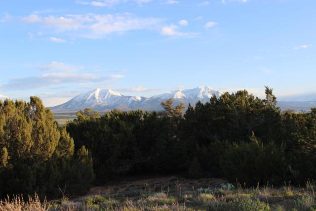 Antelope Lp., Navajo Ranch Est Lot # 145, Walsenburg, CO 81089 (MLS #19-465) :: Big Frontier Group of Bachman & Associates
