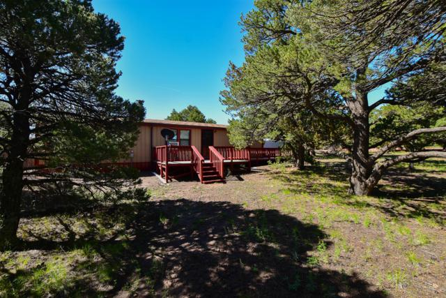3049 Comanche Drive, Walsenburg, CO 81089 (MLS #19-473) :: Big Frontier Group of Bachman & Associates