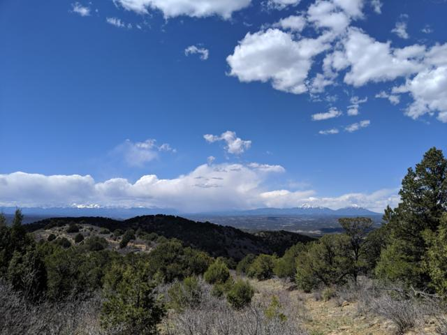 TBD Elk Park Rd Lot 60, Trinidad, CO 81082 (MLS #19-477) :: Big Frontier Group of Bachman & Associates