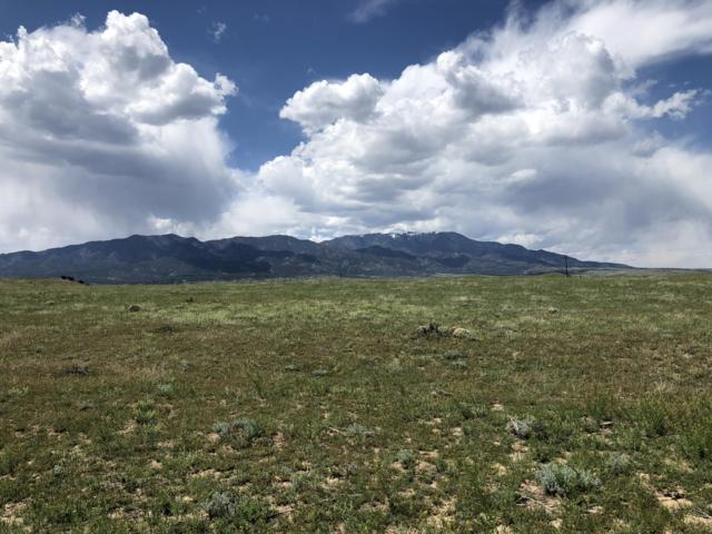Lot 78 Colorado Buffalo Ranch, Walsenburg, CO 81089 (MLS #19-484) :: Bachman & Associates
