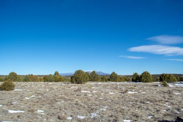 Lot 11 Navajo Ranch Resorts Filing 1, Walsenburg, CO 81089 (MLS #19-50) :: Big Frontier Group of Southern Colorado Realty