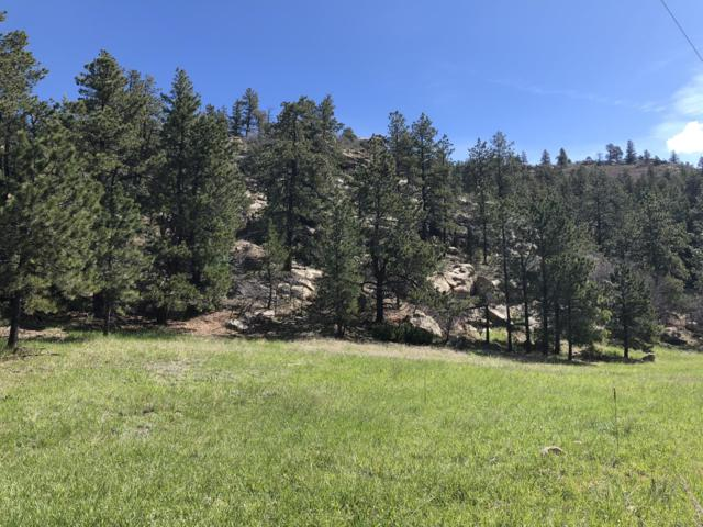 54&55 Cimarron Ranches Phase 1, Weston, CO 81091 (MLS #19-509) :: Big Frontier Group of Bachman & Associates