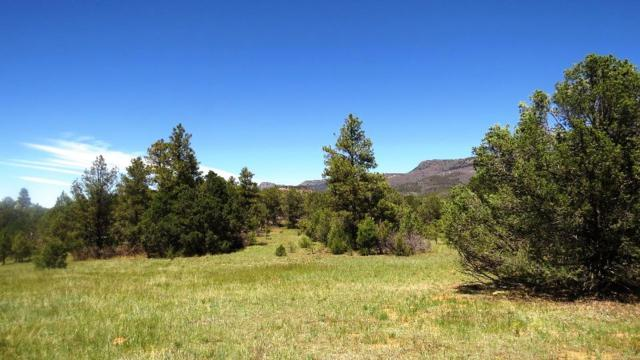 140 Alpine Meadows Drive Parcel F41, Trinidad, CO 81082 (MLS #19-516) :: Big Frontier Group of Bachman & Associates