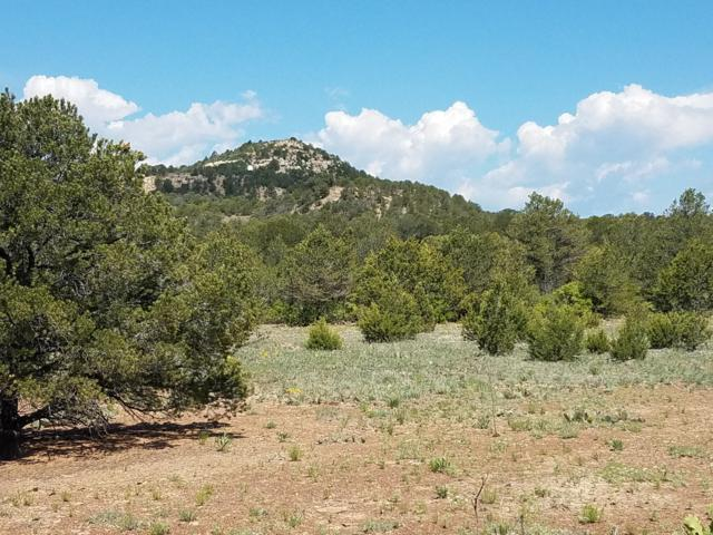 27401 Madrid Canyon Rd, Trinidad, CO 81082 (MLS #19-547) :: Big Frontier Group of Bachman & Associates
