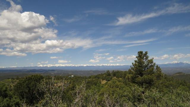 32450 Timber Ridge Ln B31, Trinidad, CO 81082 (MLS #19-566) :: Big Frontier Group of Bachman & Associates