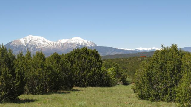 TBD Sunset Court # 82, Walsenburg, CO 81089 (MLS #19-569) :: Big Frontier Group of Bachman & Associates