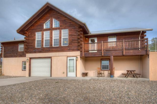 33710 Fishers View Trail, Trinidad, CO 81082 (MLS #19-574) :: Big Frontier Group of Bachman & Associates