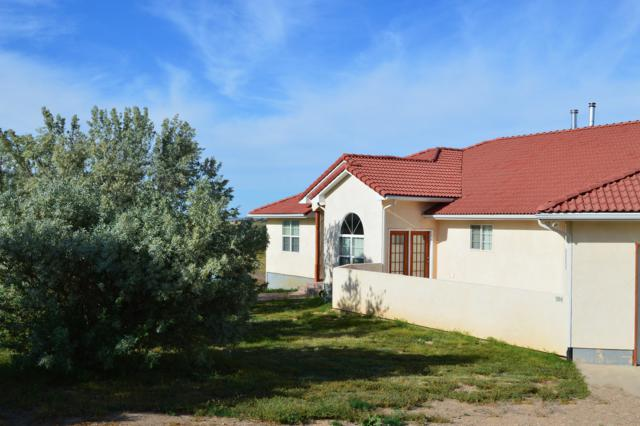 504 Lonesome Whistle Rd, Walsenburg, CO 81039 (MLS #19-598) :: Big Frontier Group of Bachman & Associates